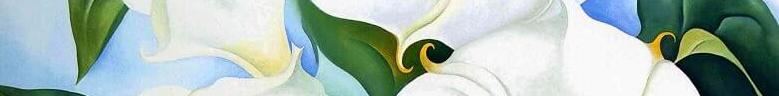 o'keefe flower8